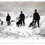 chiensvosges2-150x150