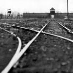 Journée du souvenir de la déportation dans GUERRE 1939 - 1945 deportation-150x150