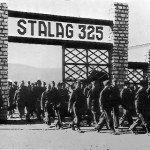 Le 13 avril 1942 - Arrivée de prisonniers français au camp de Rawa Ruska dans EPHEMERIDE MILITAIRE Stalag-325-150x150