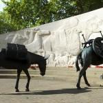 Deux mémoriaux militaires vandalisés à Londres dans COUP DE GUEULE memorial-des-animaux-de-guerre--150x150